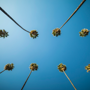 5 Tips on Moving to Los Angeles