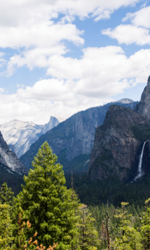 A Trip to Yosemite National Park
