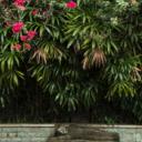Exploring Seminyak, Bali – Most Instagram-able Things to do in Seminyak